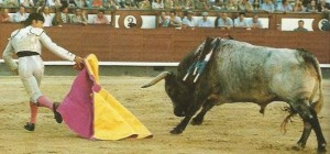 Correr al toro a una mano