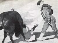 Miguelañez a una mano en Las Ventas 1967