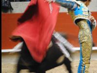 Matador de toros Sebastián Castella en la plaza de toros de pontevedra