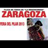 Zaragoza 2013