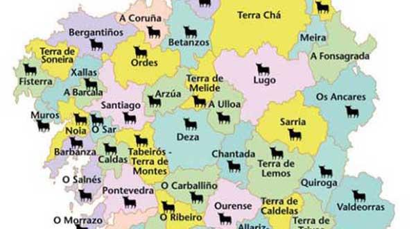 Galicia taurina