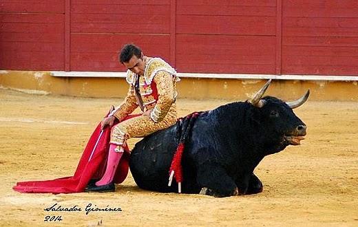 El Fandi sentado en el Zalduendo, Salvador Giménez