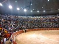 Plaza de toros de La Coruña 2014 (Coliseum)