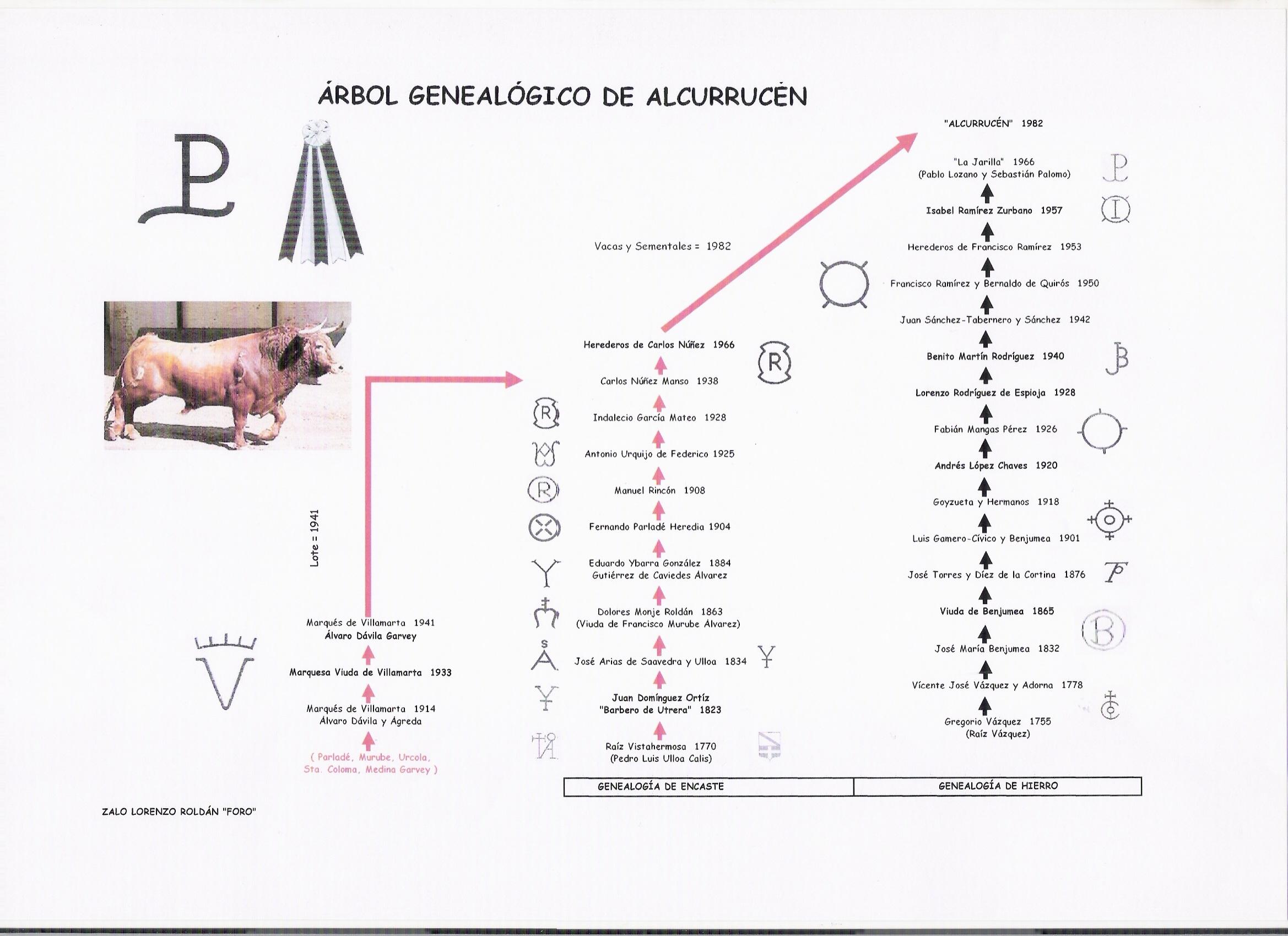 arbol_alcurrucen_foro