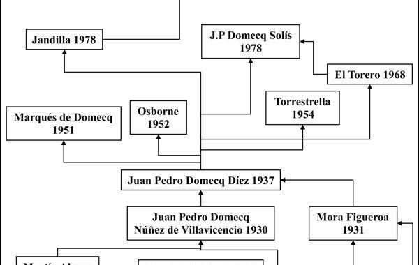 arbol_genealogico_ganaderia_daniel-ruiz