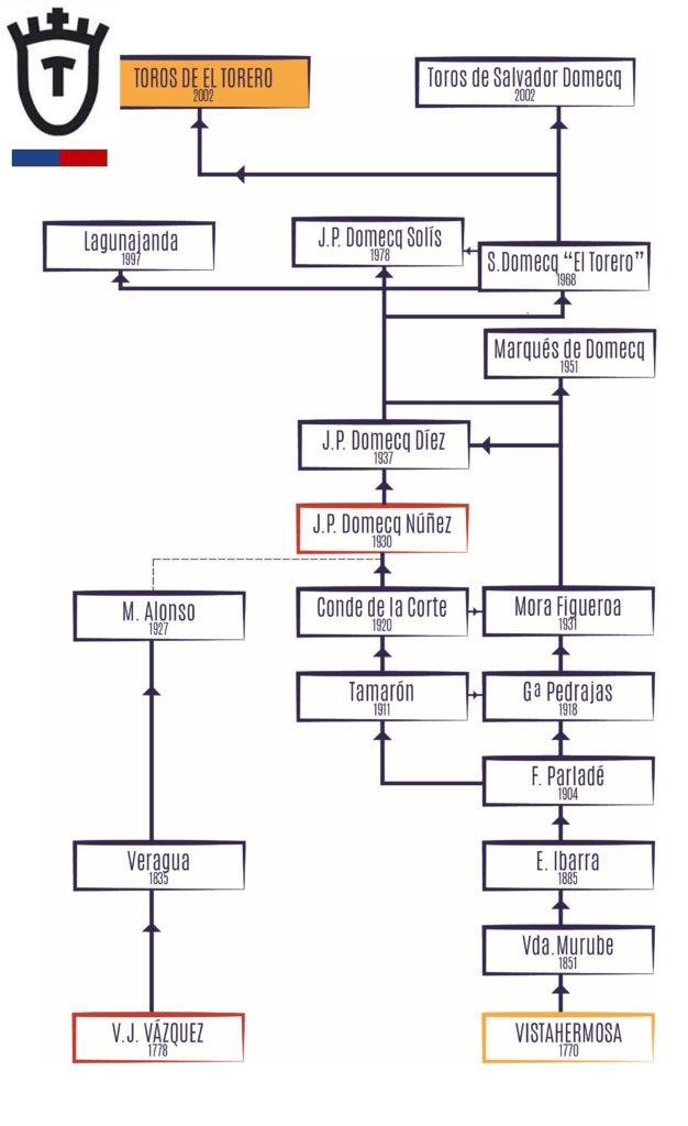 árbol_ganadería_el_torero